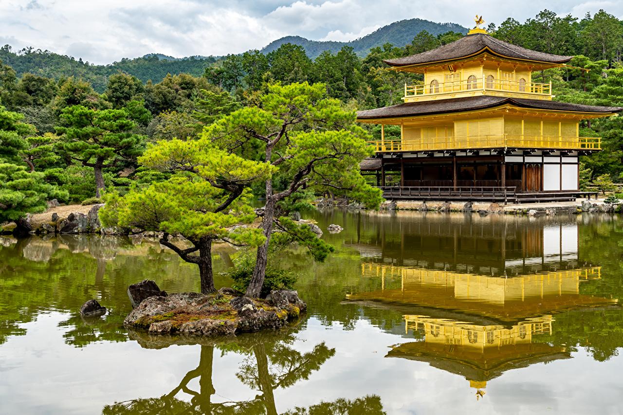 Image Kyoto Japan Nature Pond Parks Pagodas Trees park