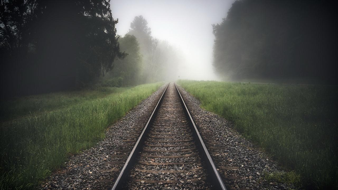 Bilder von Schienen Nebel Natur Gras Eisenbahn