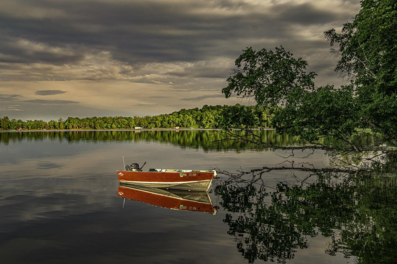 EUA Rios Barcos Minnesota Galho Reflexo rio, Estados Unidos, refletido Naturaleza
