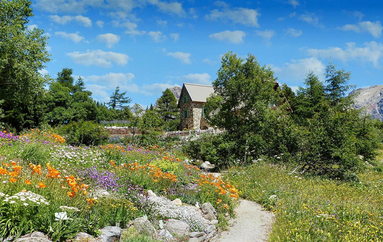 Images France Valloire Trail Nature papaver Bush Houses path Poppies Shrubs Building
