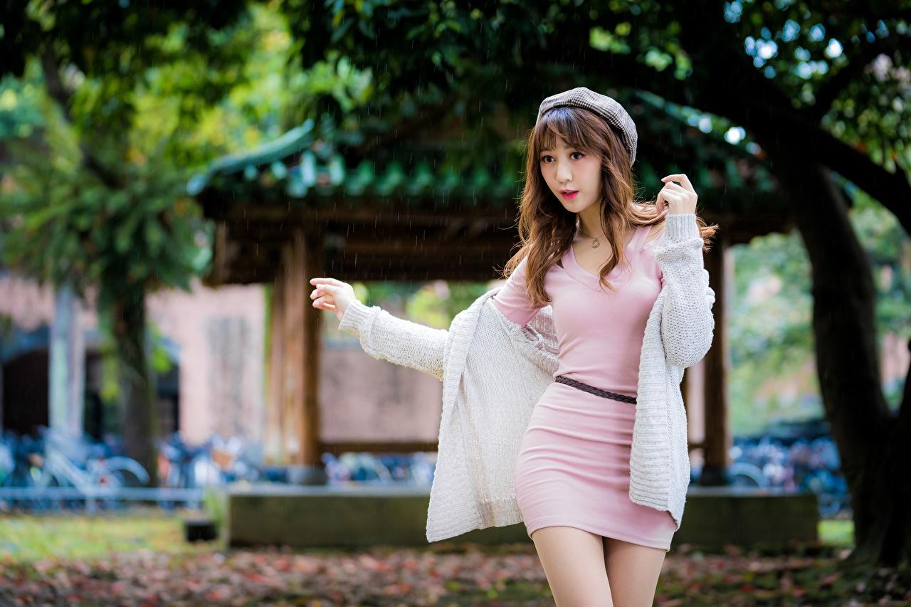 Fotos von Braune Haare unscharfer Hintergrund Pose Barett junge frau Asiatische Hand Kleid Braunhaarige Bokeh posiert Mädchens junge Frauen Asiaten asiatisches