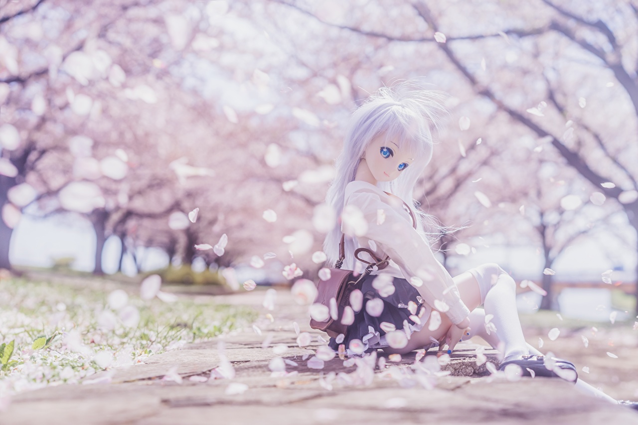 Pictures Blonde girl Doll Cherry blossom Beautiful young woman Sitting Sakura Girls female sit