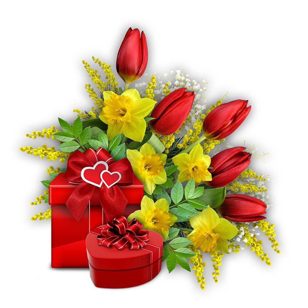 Fotos Valentinstag Herz Tulpen Blüte Schachtel Geschenke Weißer hintergrund Blumen