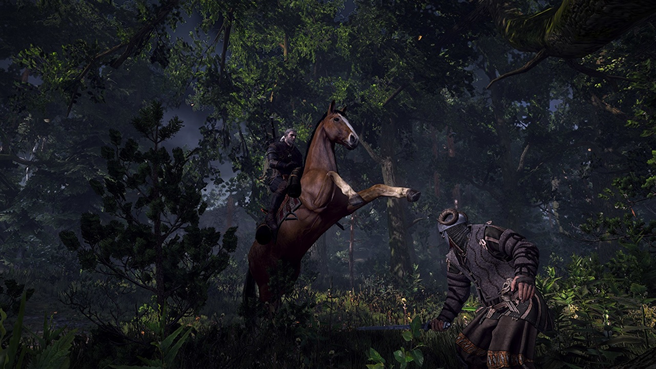 Image The Witcher The Witcher 3: Wild Hunt horse Warriors 3D Graphics forest vdeo game Horses warrior Games Forests