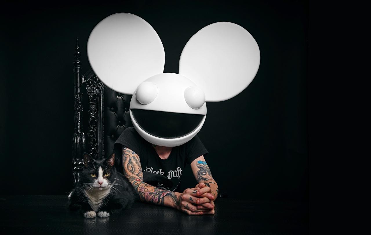 Bilder DJ Deadmau5 EDM