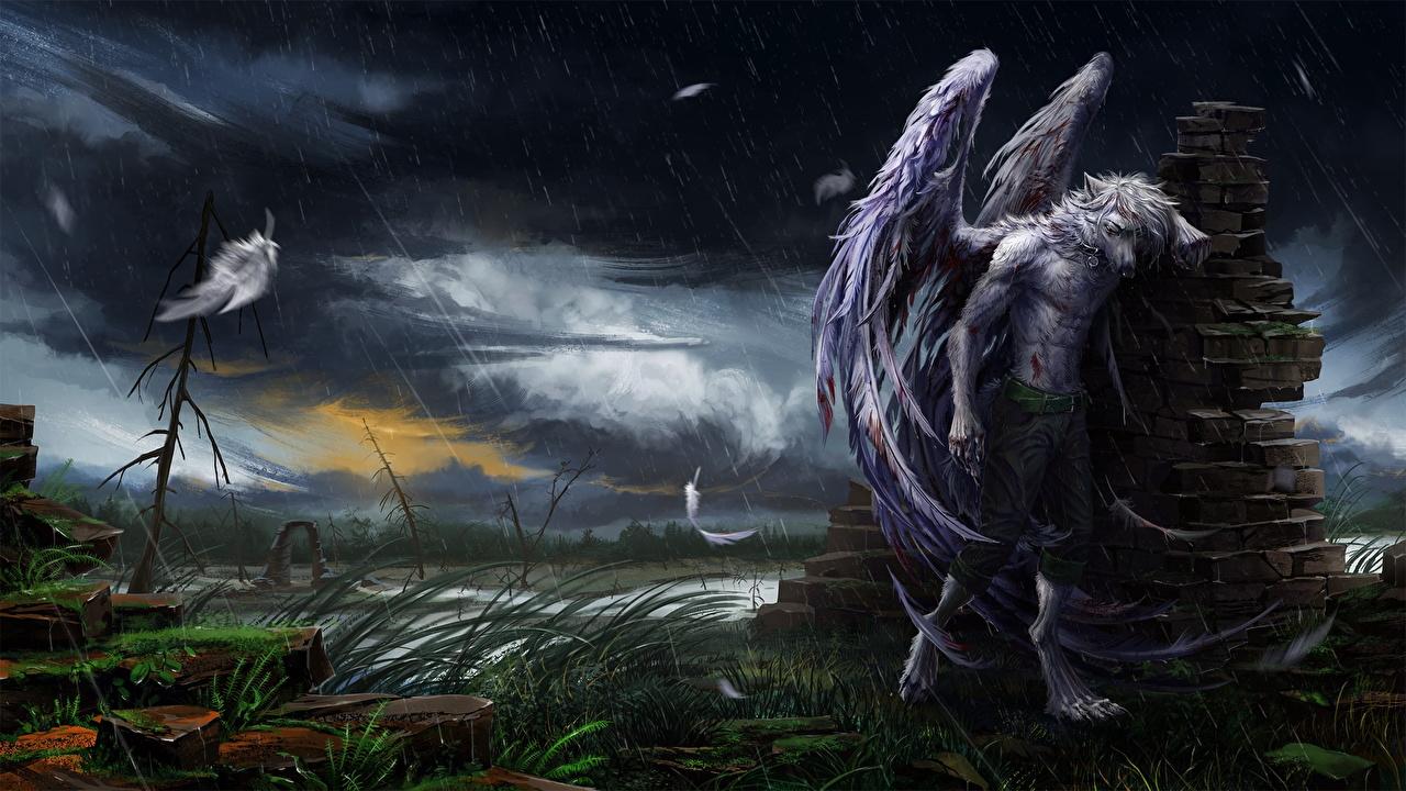 壁紙 ファンタジー動物 雨 天使 翼 ファンタジー ダウンロード 写真