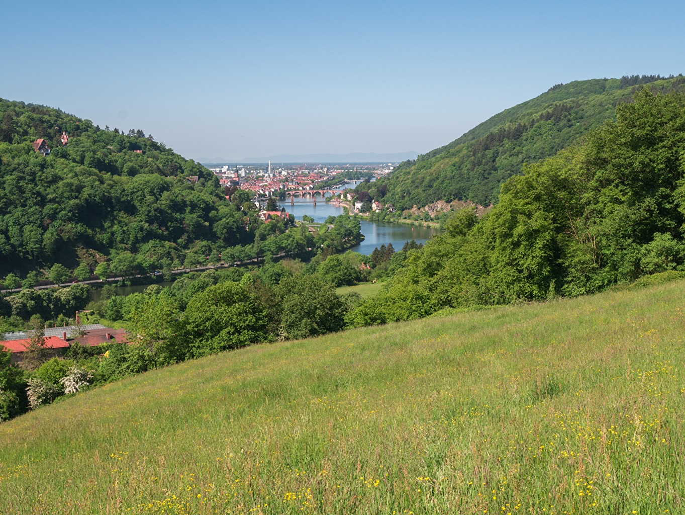 Photos Germany Nature Hill forest Meadow river Grass Forests Grasslands Rivers