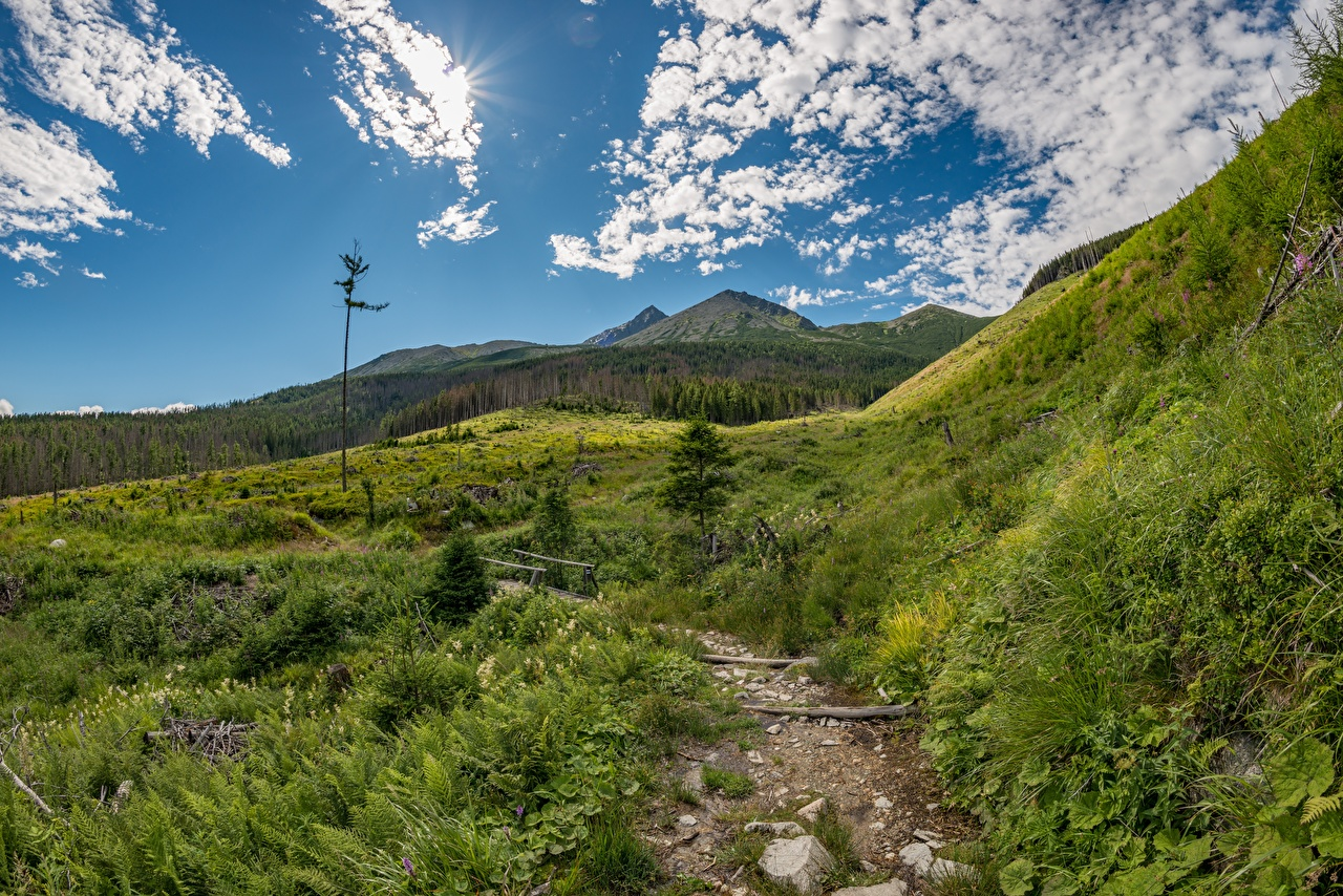 Pictures Slovakia Tatras Trail Nature Mountains landscape photography Grass path mountain Scenery