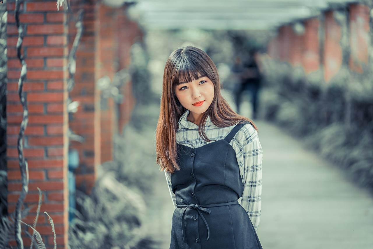 Fotos von Braune Haare Bokeh Mädchens Asiaten Starren Braunhaarige unscharfer Hintergrund junge frau junge Frauen Asiatische asiatisches Blick