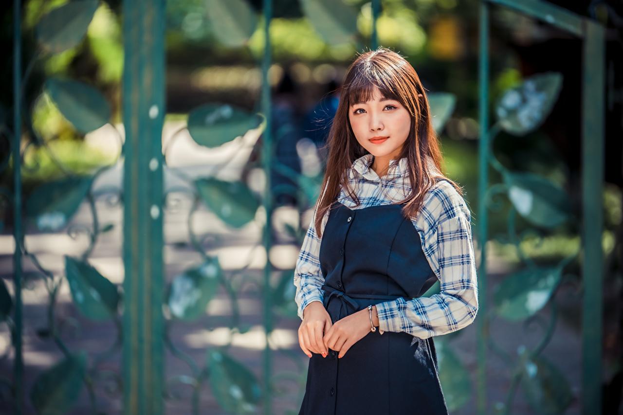 Bilder von Bokeh Pose junge frau Asiaten Starren unscharfer Hintergrund posiert Mädchens junge Frauen Asiatische asiatisches Blick