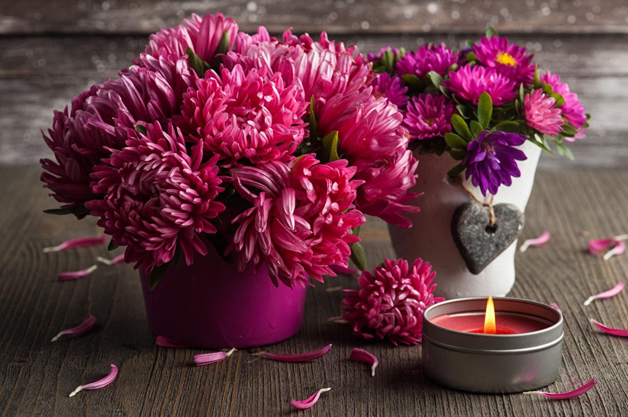 Bilder Sträuße kronblätter Blüte Chrysanthemen Kerzen Blumensträuße Blütenblätter Blumen