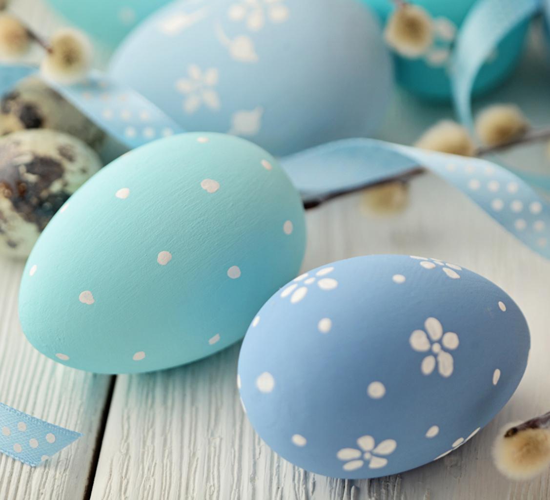 Images Easter Eggs Light Blue Food Closeup egg
