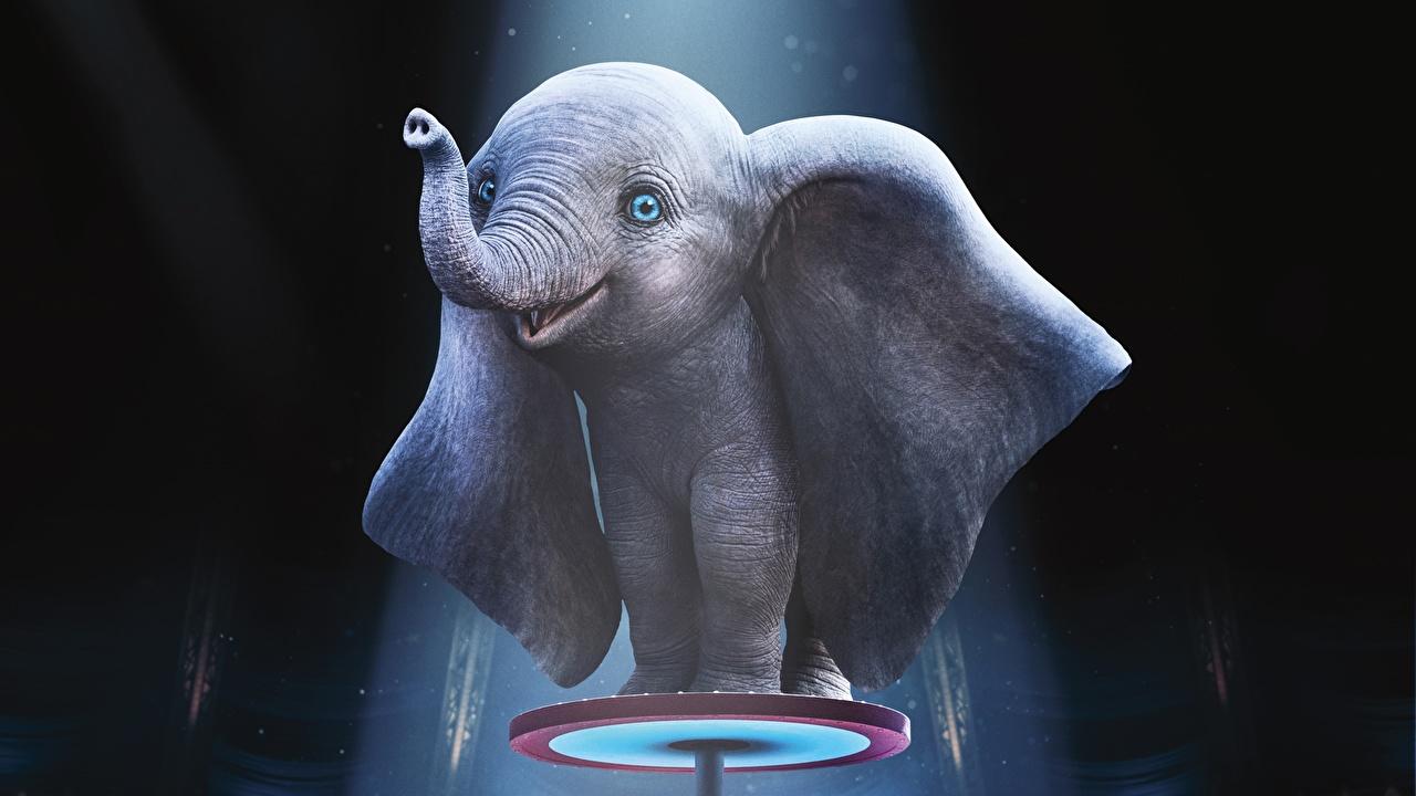 Fonds D Ecran Elephant Petits Dumbo 2019 Cinema 3d