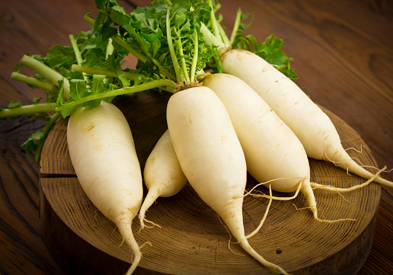 Pictures White Radishes Food Vegetables Closeup