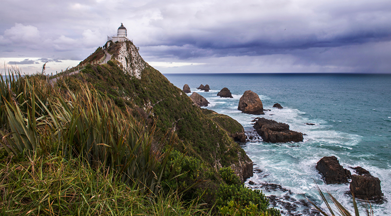 Pictures New Zealand Nugget Point Nature Lighthouses Coast Stones stone