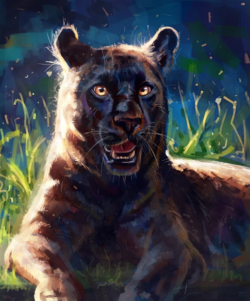 Bilder Große Katze Schwarzer Panther Tiere Gezeichnet