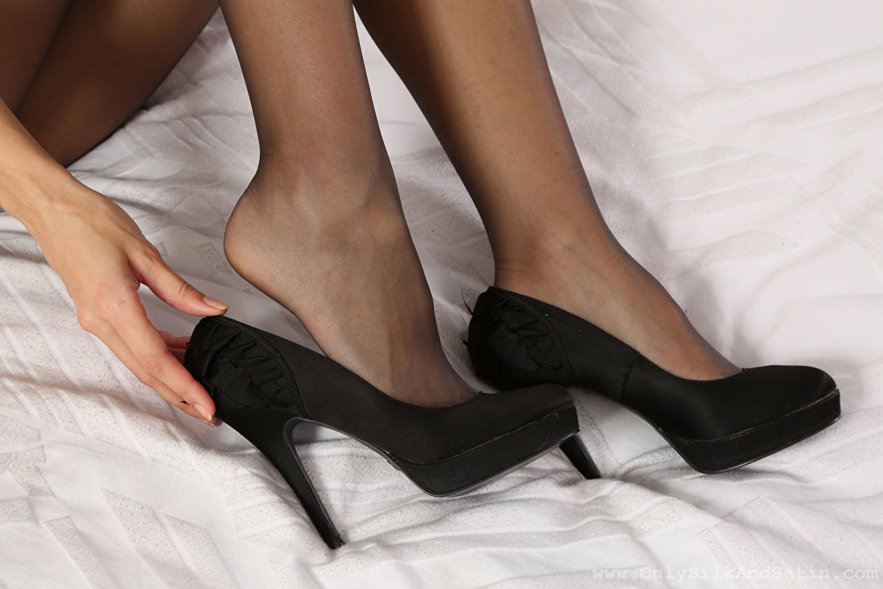 Bakgrunnsbilder Strømpebukser Unge kvinner Ben Nærbilde Kvinners hæler ung kvinne
