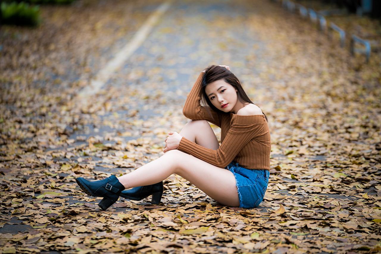 Fotos Blattwerk Bokeh Mädchens Bein asiatisches sitzt Shorts Blatt unscharfer Hintergrund junge frau junge Frauen Asiaten Asiatische sitzen Sitzend