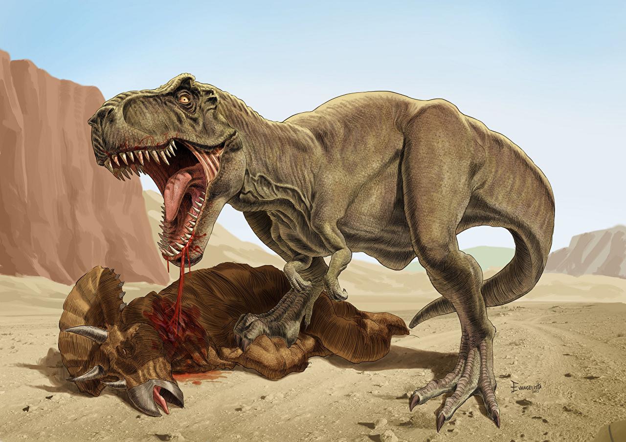 fotos tyrannosaurus rex dinosaurier tiere alte tiere