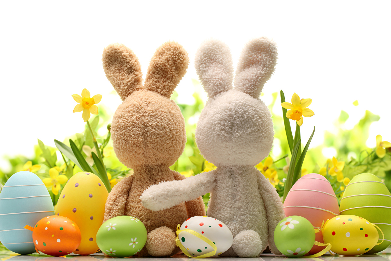 Image Easter Rabbits egg 2 Holidays White background rabbit Eggs Two