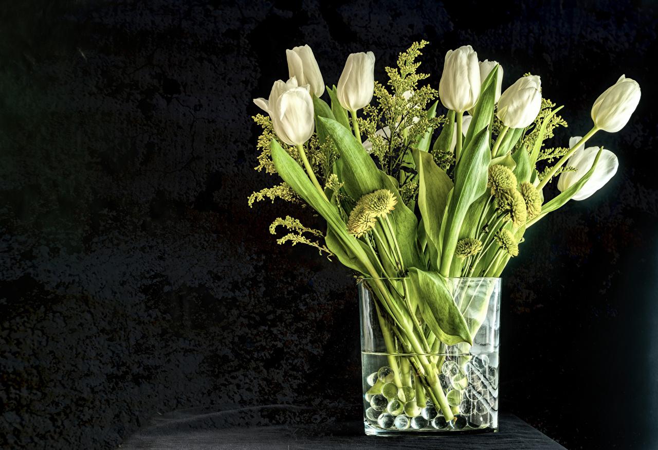 Photos White Tulips Flowers Vase Gray background tulip flower