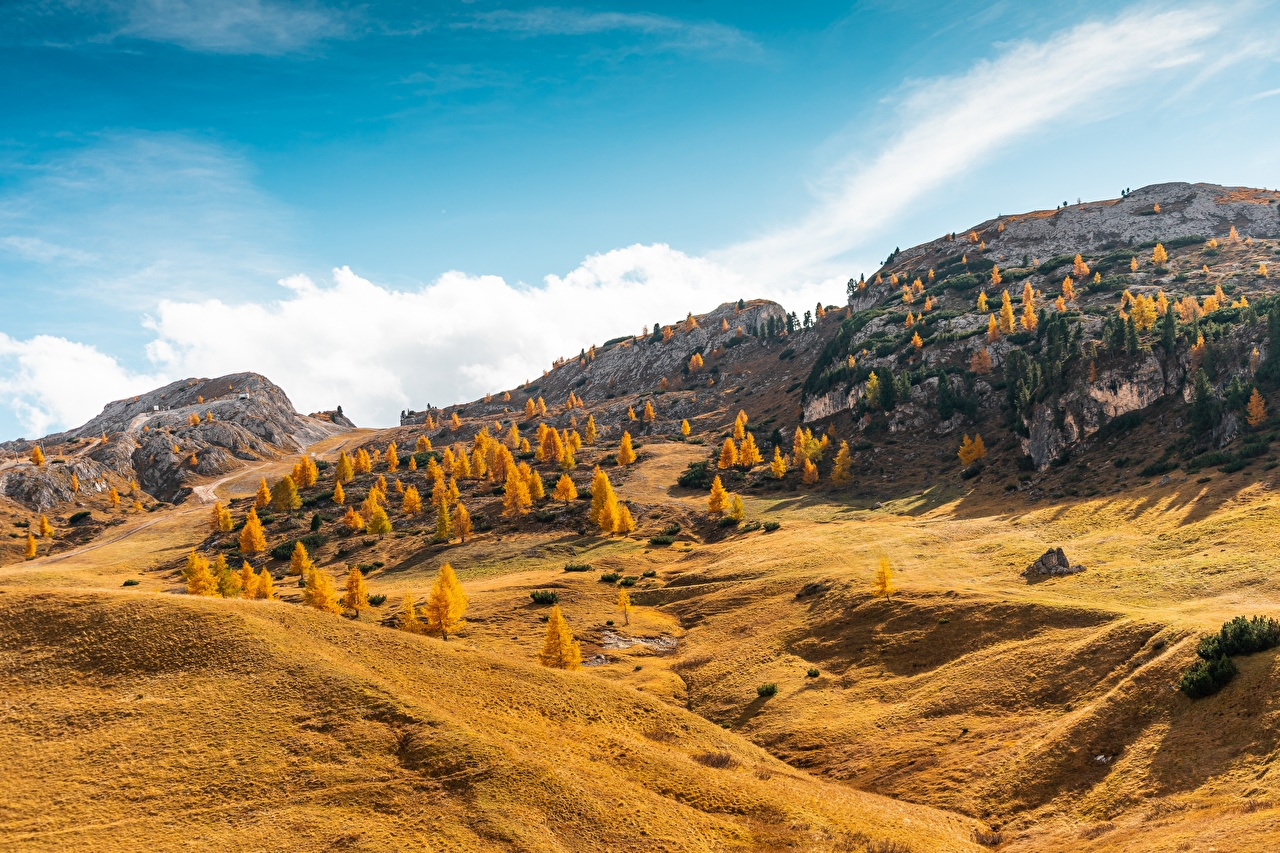 Images Italy South Tyrol, Dolomite Alps Autumn Nature Hill forest Forests