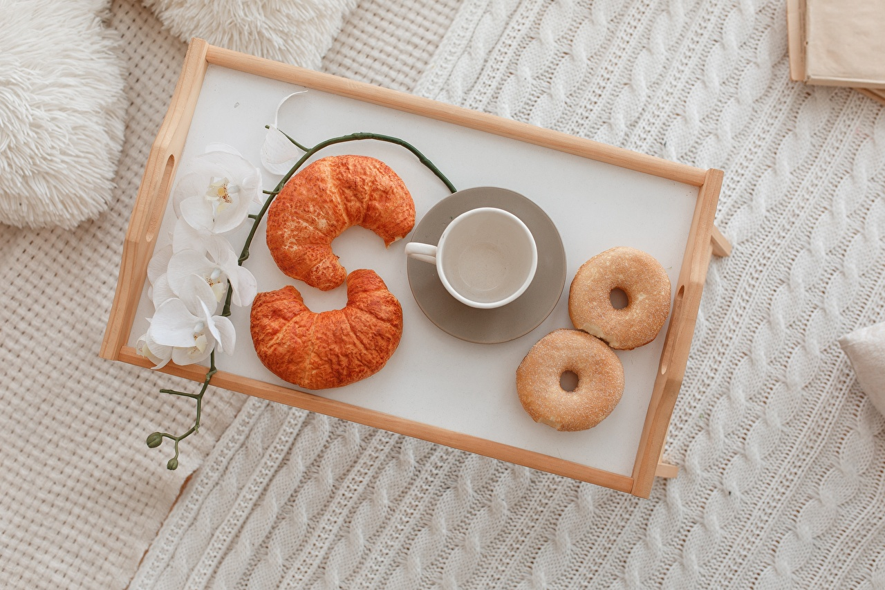 Photos Tray Donuts orchids Croissant Cup Food Orchid Doughnut
