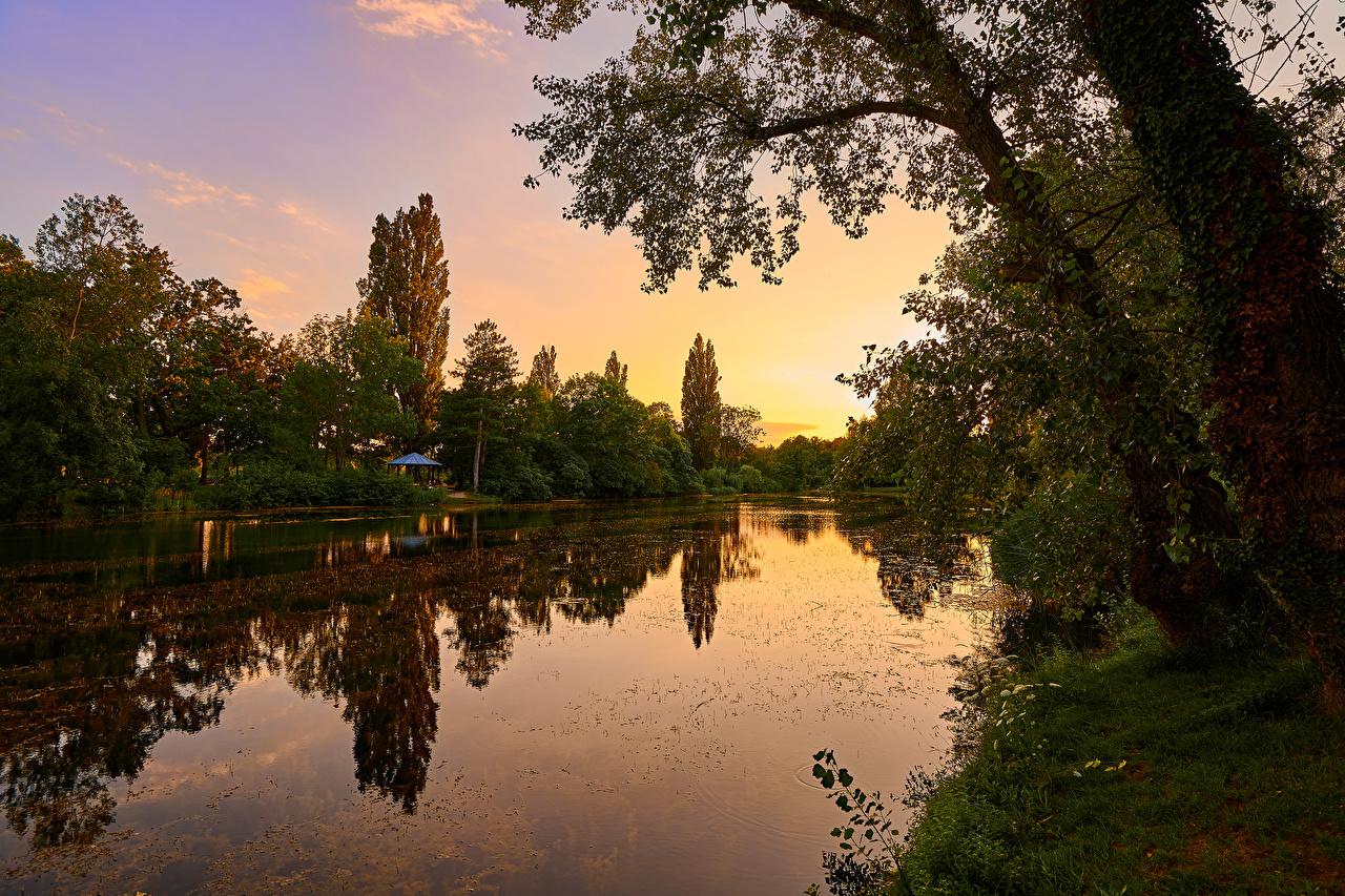 Wallpaper Vienna Austria Wasserpark Floridsdorf Nature Parks sunrise and sunset river Trees park Sunrises and sunsets Rivers