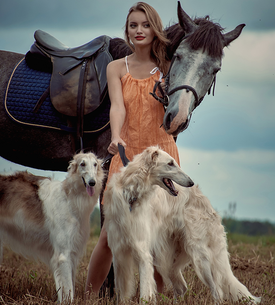 frau mit hund und pferd