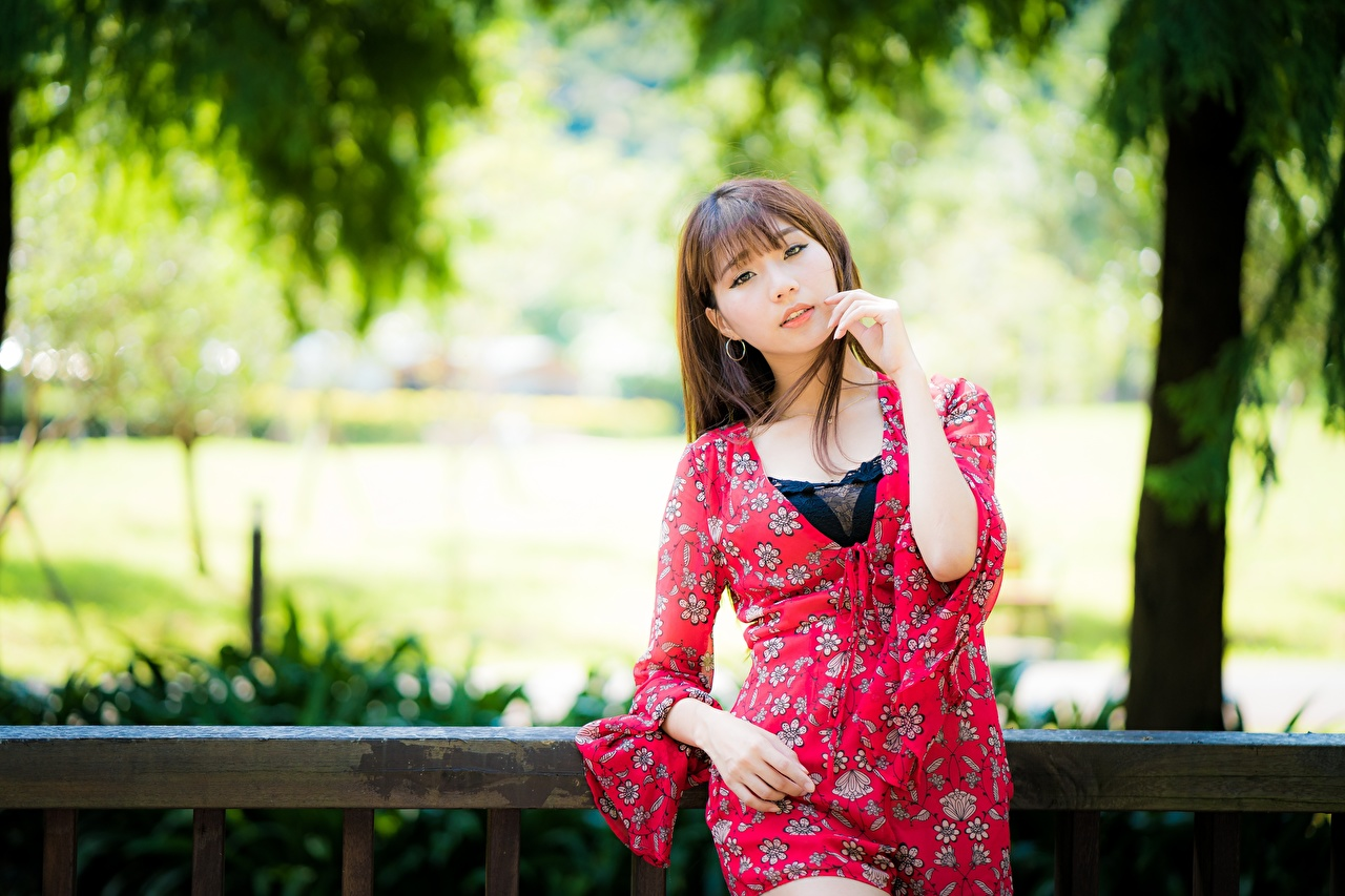 Pictures Brown haired blurred background young woman Asiatic Hands Staring Bokeh Girls female Asian Glance