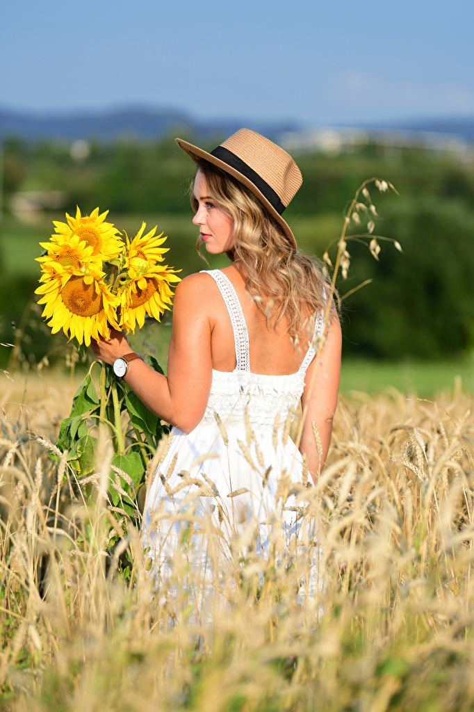 Pictures Blonde girl Selina Bouquets Hat Girls Nature Fields Helianthus Dress  for Mobile phone bouquet female young woman Sunflowers gown frock