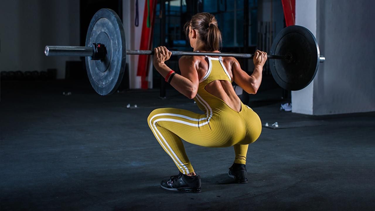 zdjęcie Tyłek Ćwiczenia fizyczne Przysiady Plecy Fitness Sztanga sportowe Dziewczyny Pupa kuca Sport sportowy dziewczyna młoda kobieta młode kobiety