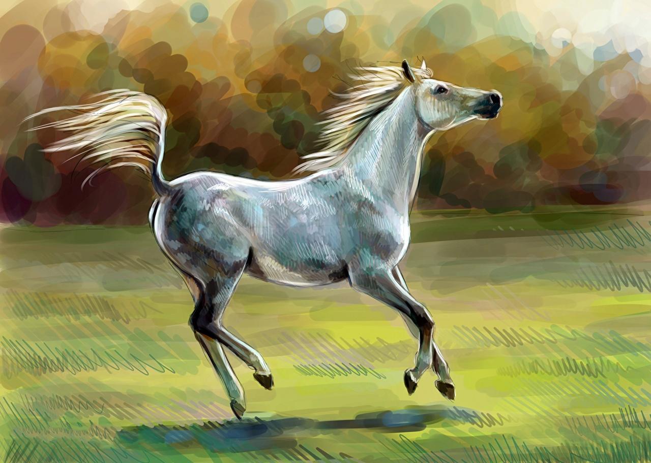 Desktop Wallpapers Horses Animal Painting Art