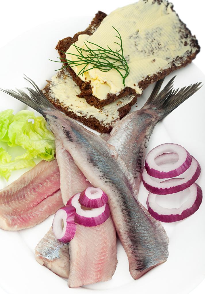 Фотографии масла Лук репчатый Рыба Хлеб Еда белым фоном Морепродукты  для мобильного телефона Масло Пища Продукты питания Белый фон белом фоне