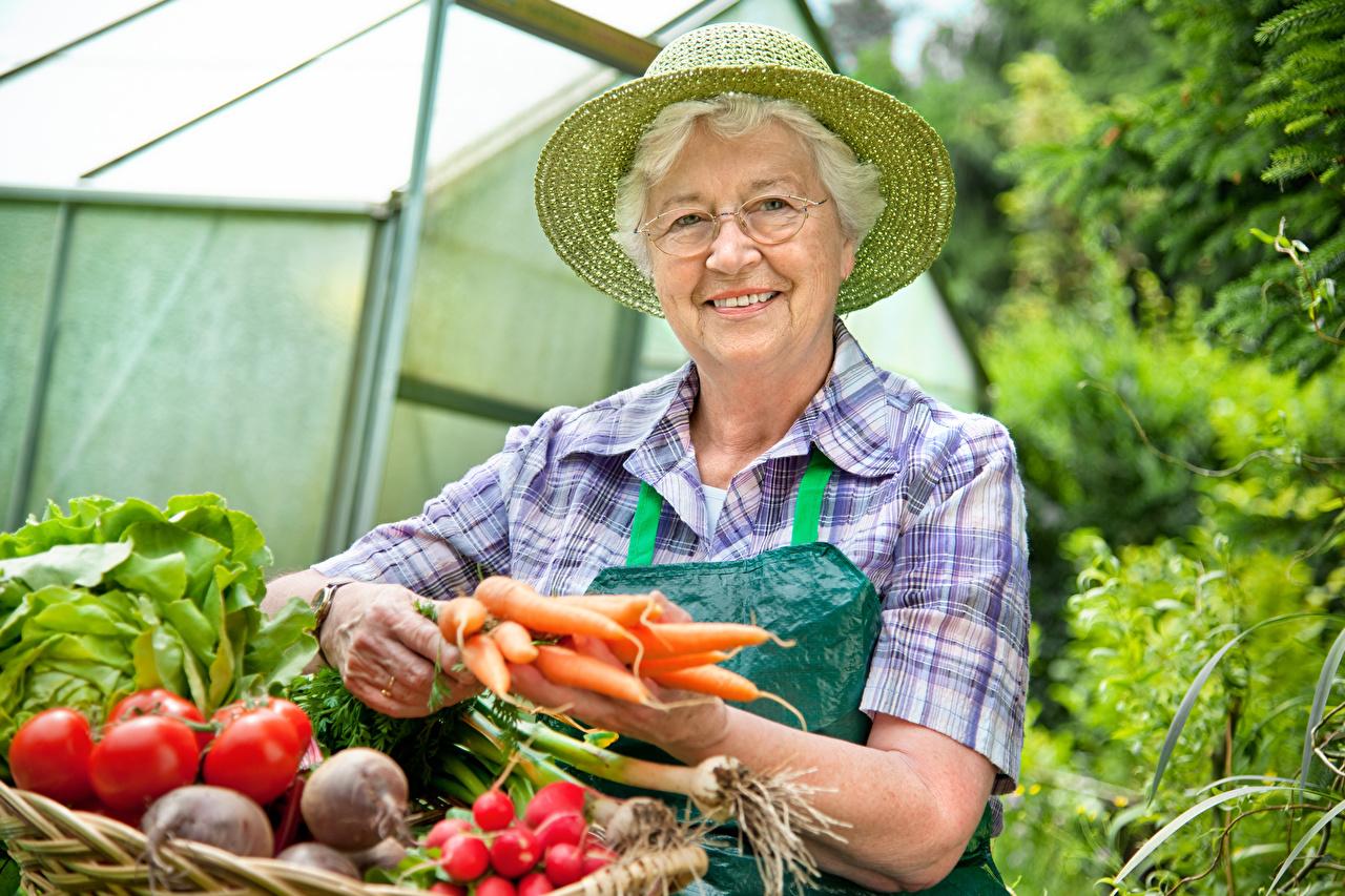 Bilder ältere frauen Lächeln Der Hut Mohrrübe Brille Gemüse Alte Frau
