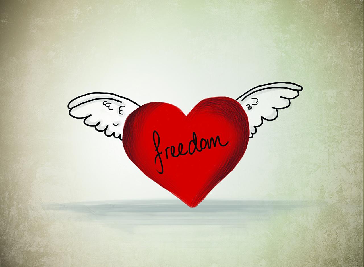 Foton Alla hjärtans dag engelska Hjärta Vingar freedom Engelsk