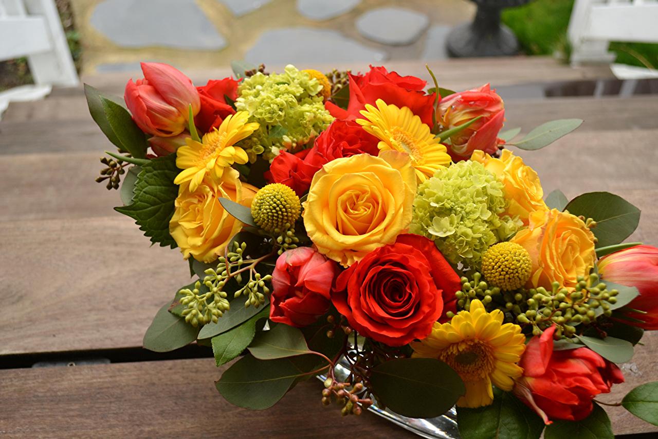 Photos Bouquet Roses Tulips Gerbera Flower Hydrangea
