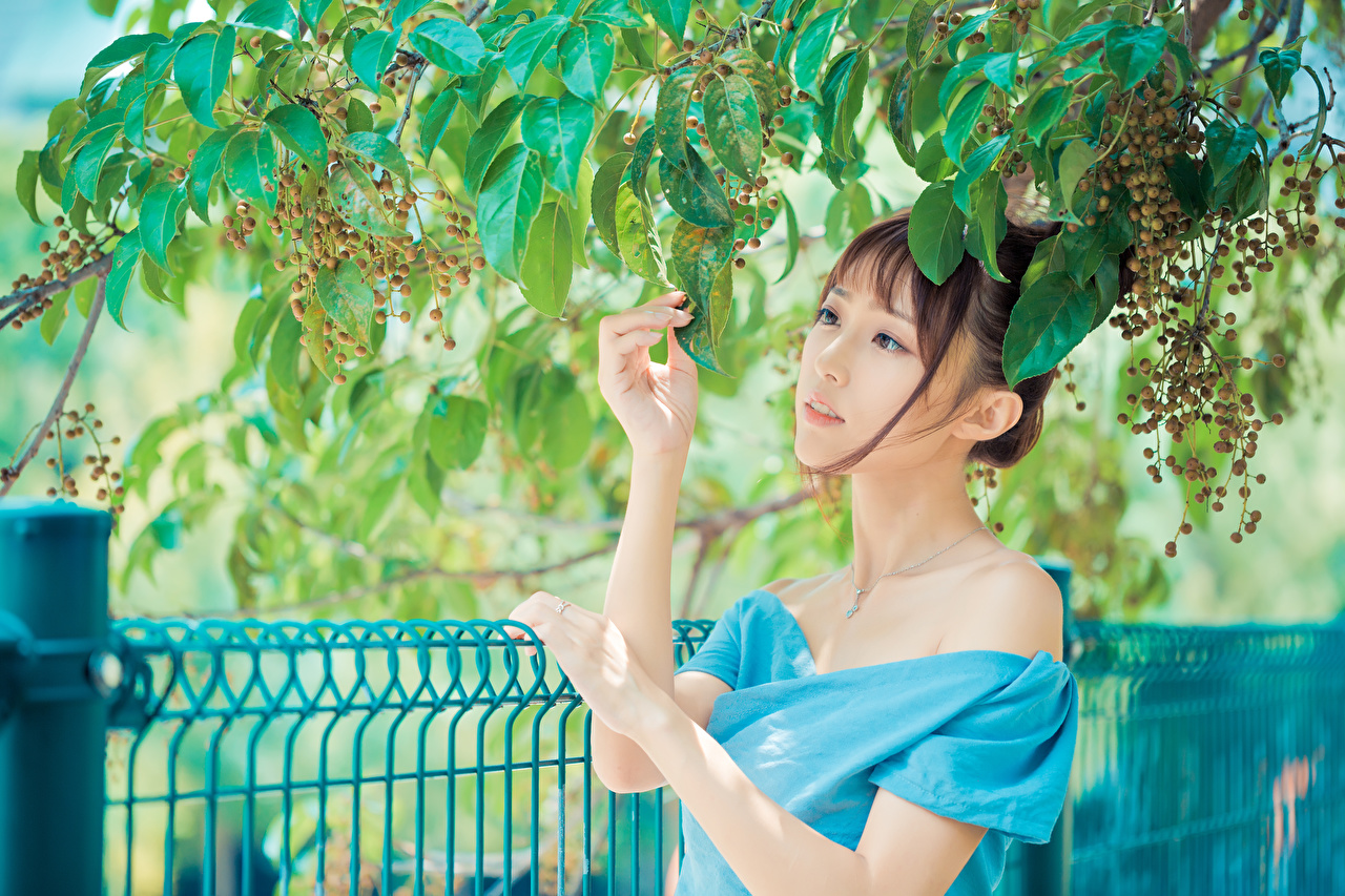Pictures Brown haired Girls Asian Hands Branches female young woman Asiatic