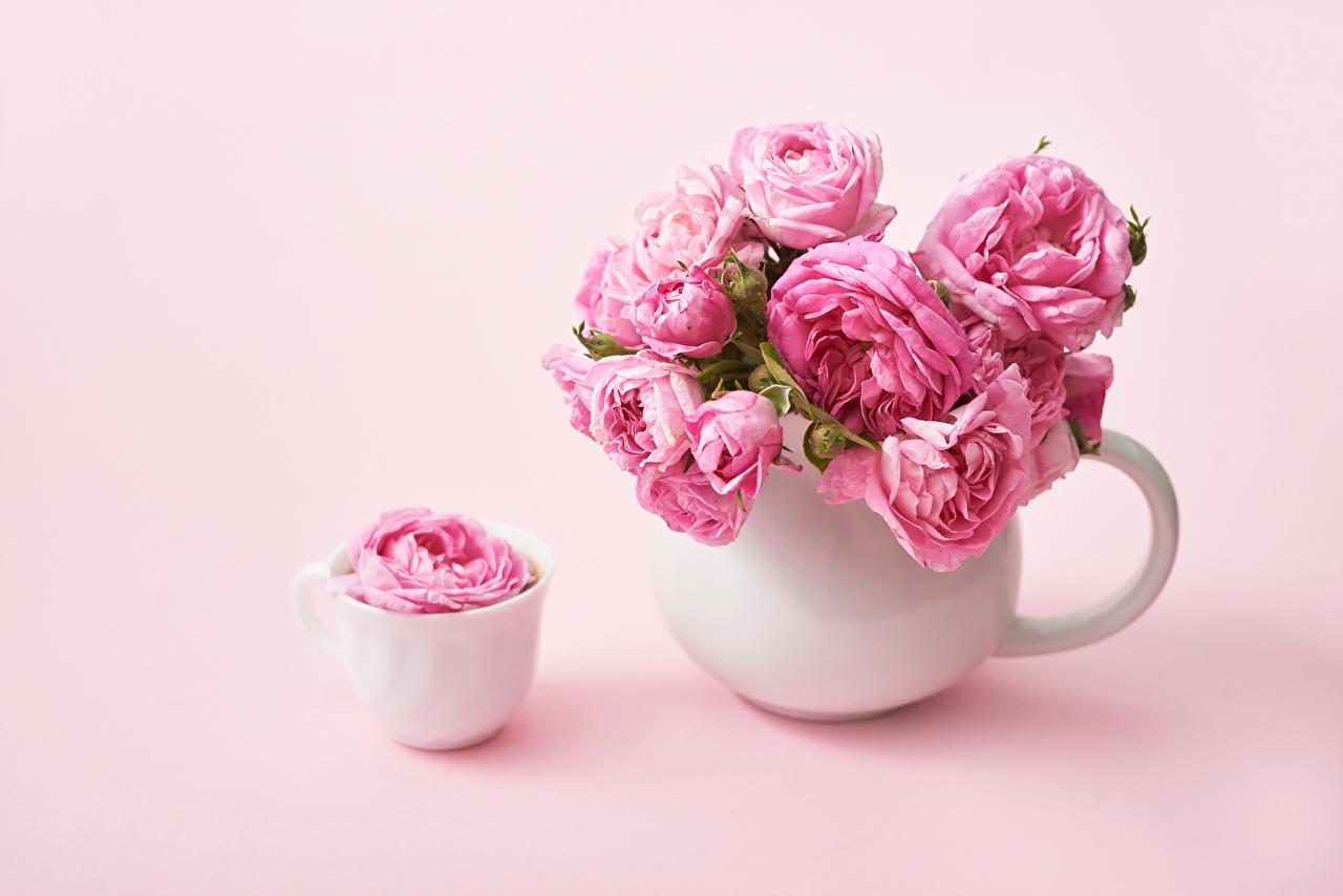 Обои для рабочего стола Розы розовые цветок Ваза Чашка роза розовых розовая Розовый Цветы вазы вазе чашке