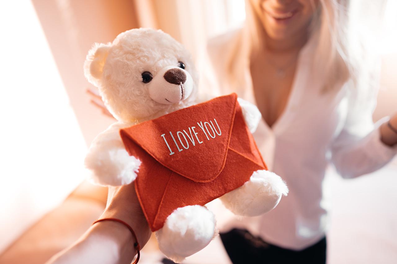 壁紙 愛 テディベア 玩具 バレンタインデー 英語 ボケ写真