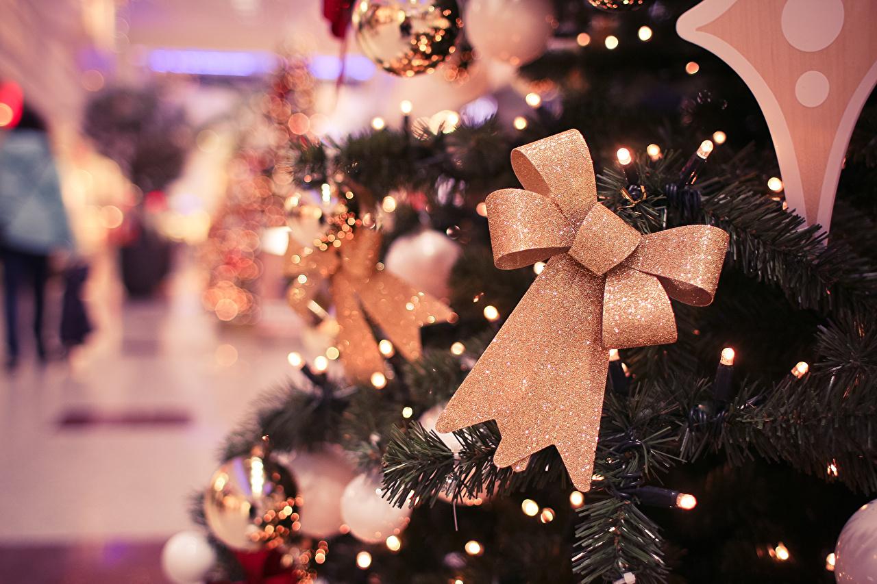 Photo Christmas New Year tree bow knot New year Christmas tree Bowknot