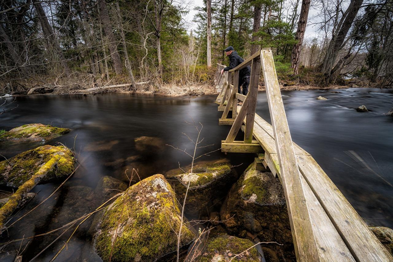 Image Man Nature Bridges Moss Stones Rivers from wood Men bridge river stone Wooden