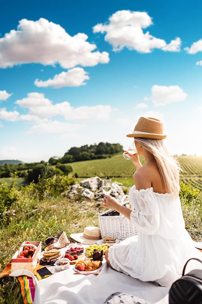 Fotos Picknick Blond Mädchen Sommer Der Hut junge Frauen sitzen Weinglas  für Handy Blondine Mädchens junge frau sitzt Sitzend