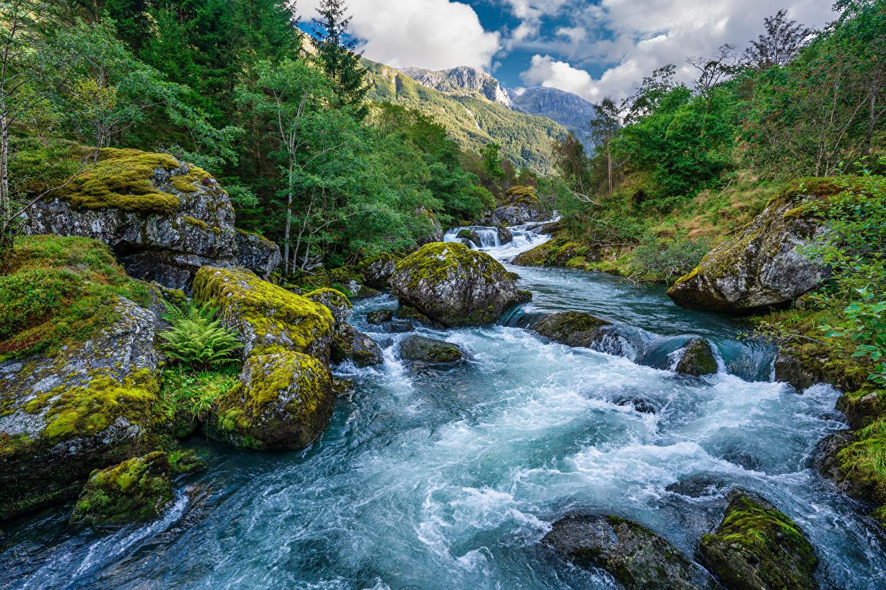Bilder Norwegen Folgefonna National Park Natur Gebirge Parks Fluss Steine Laubmoose Berg Stein Flusse
