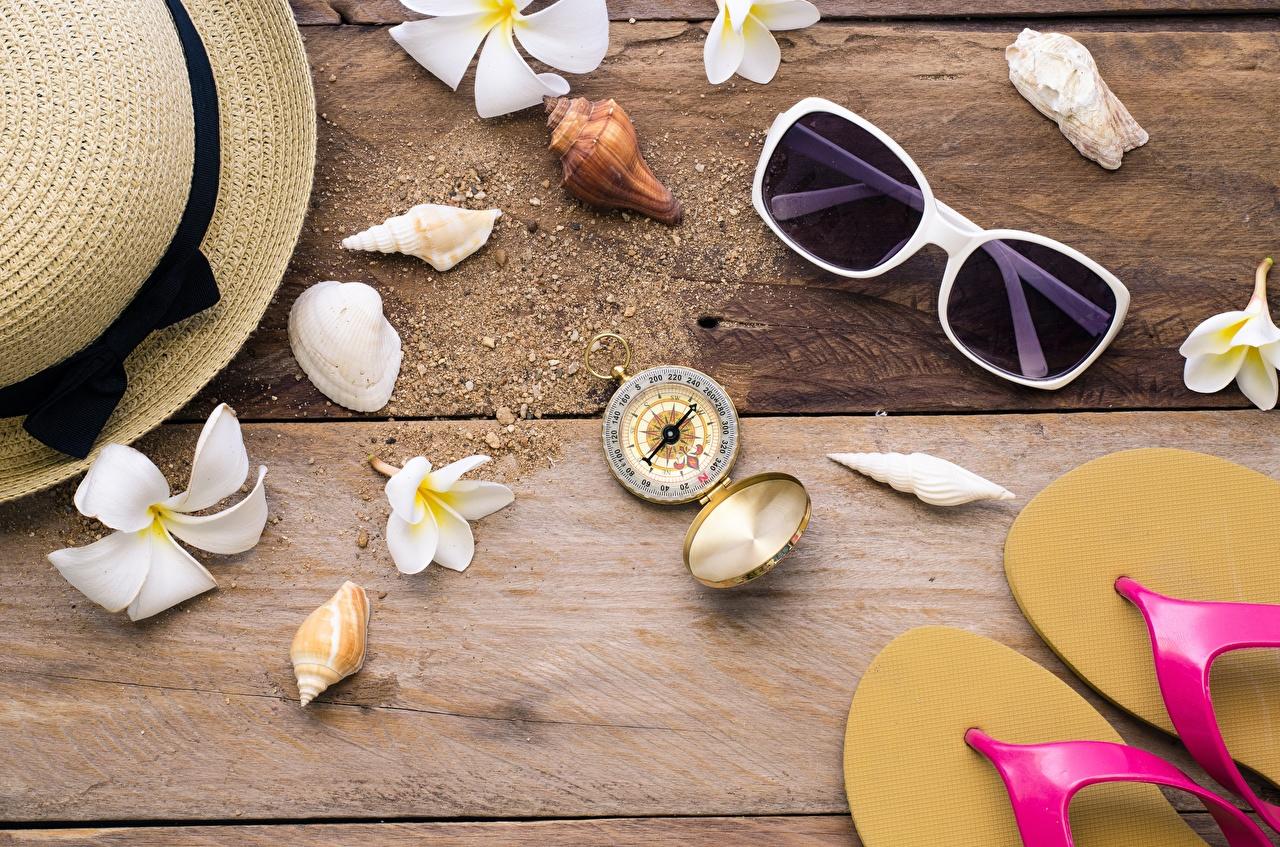 Photos Compass Flip-flops Hat Shells Plumeria eyeglasses boards Glasses Wood planks