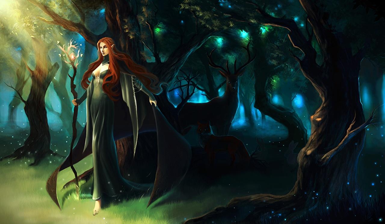 、エルフ、魔術、シカ、杖、若い女性、ファンタジー、少女、