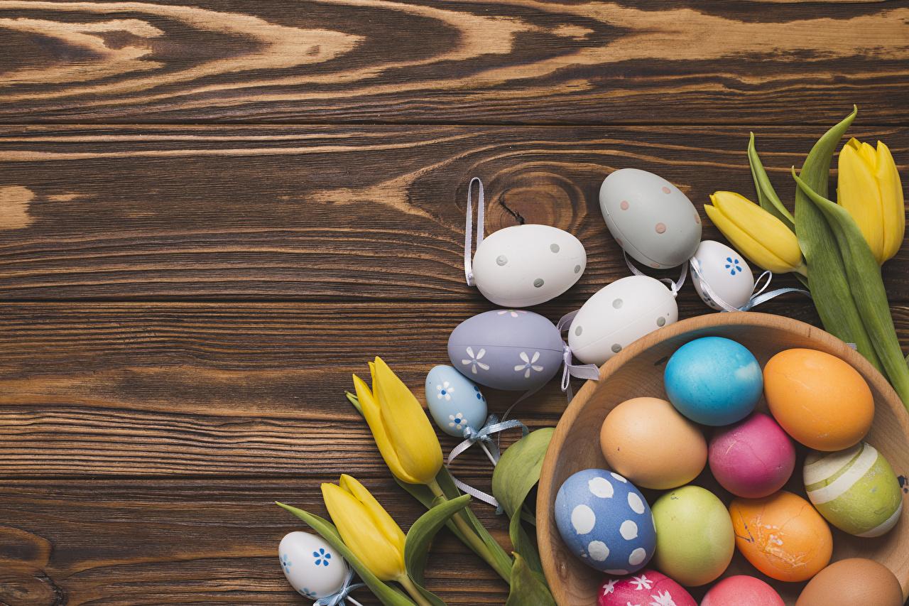 Photo Easter Multicolor Eggs tulip Flowers boards egg Tulips flower Wood planks