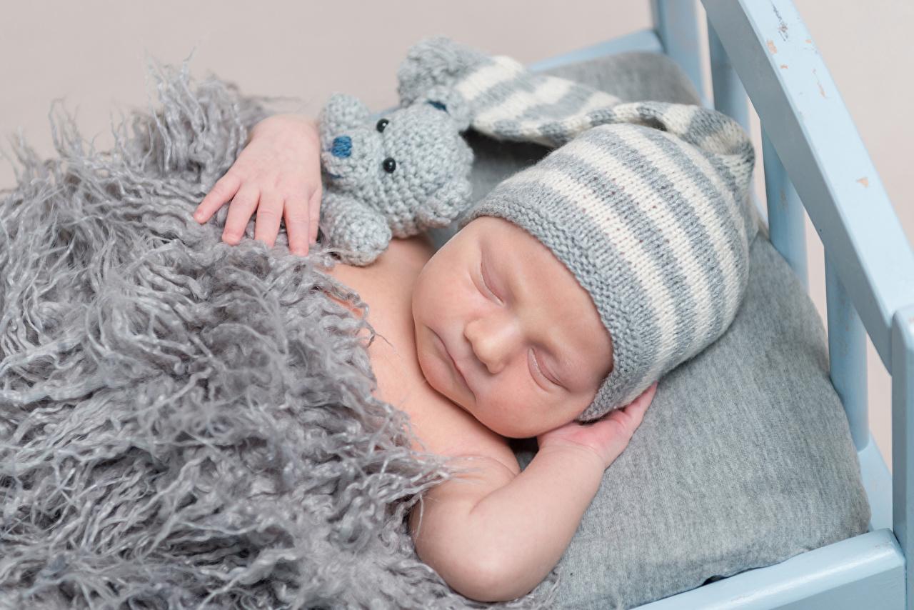 Wallpaper Infants Children Sleep Winter hat Teddy bear Baby newborn