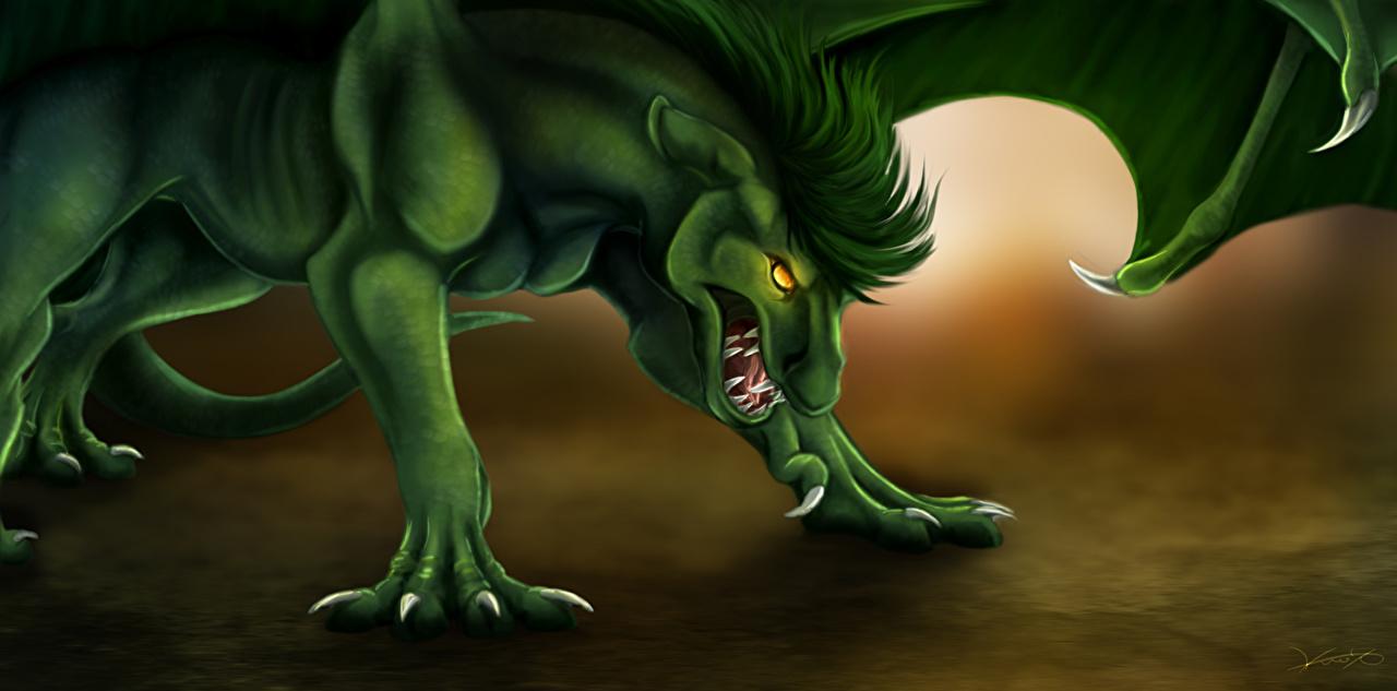 Photo dragon Green Fantasy Dragons