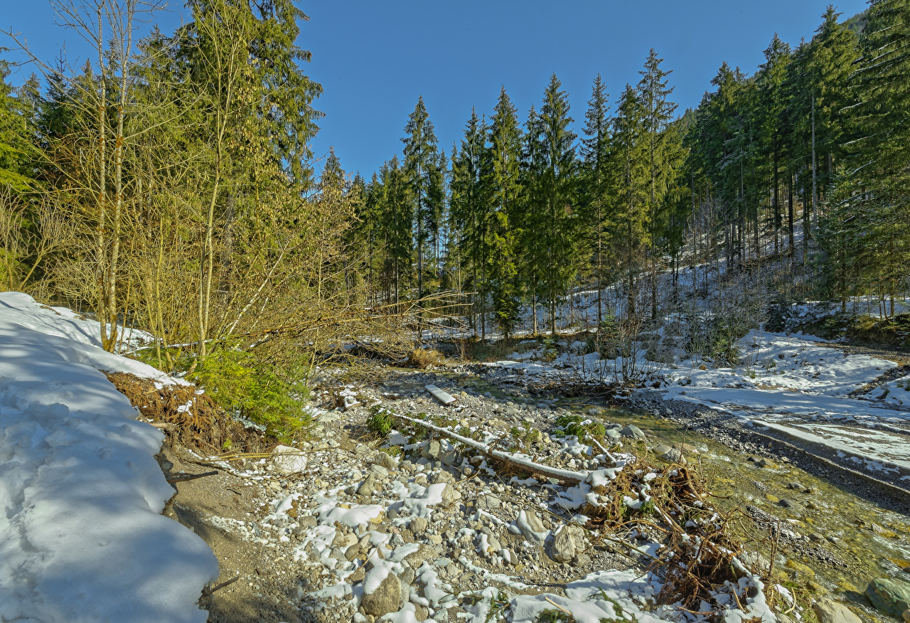 Pictures Alps Austria Tyrol Nature Spruce Winter Snow Forests